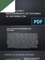Aplicacion de Pruebas de Sistemas Diapositivas en Binas