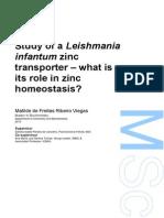 Tese leishmania infantum, zinc transporter, cdf