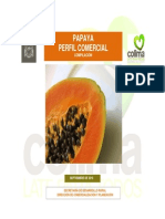880Papaya Perfil Comercial