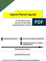 Injuria Renal Aguda2012 (2)