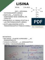 algunos aminoacidos