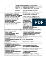 Diferencias Célula Procariota y Eucariota
