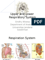 Upper and Lower Resp System - Sindhu Wisesa.pptx