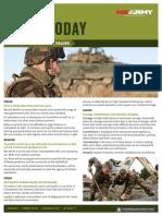 NZ Army Values