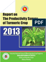 Report Turmeric Business