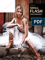 1Tehniques Flash.pdf