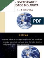 Diversidade Na Biosfera Scribb