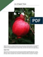 Common Diseases of Apple Trees
