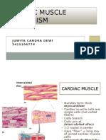 Cardiac Muscle Mechanism-Juwita Candra Dewi