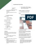Guía de laboratorio FIV