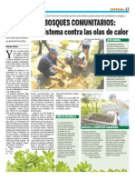 Bosques Comunitarios