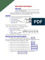 Marimi Fizice Vectoriale - Sinteza Teoretica[1]