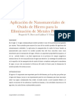 Aplicación de nanomateriales de oxido de hierro para metales pesados
