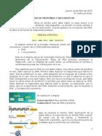 Sintesis de Proteinas 16-4-2015