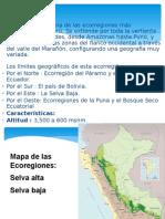 Selva Alta y Amazonia