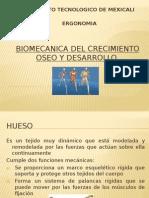 Capitulo 4 biomecanica DEL CRECIMIENTO OSEO Y DESARROLLO.pptx