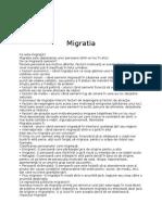 Despre Migratie,Piata Muncii Si Educatie