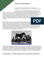 Historia Del Schnauzer Miniatura