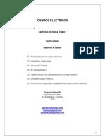Problemas Resueltos Campo eléctrico