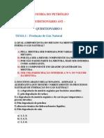 Questionário Av 02