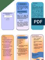 Leaflet Diare Sri Wahyuni
