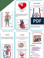 triptico de anahi.pdf