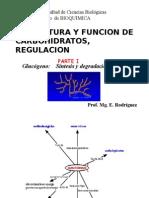 Bioquimica MetabolismoCHO
