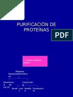 PURIFICACIÓN DE PROTEINAS.ppt