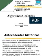 Algoritmos Geneticos