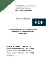 Relatorio Cromatografia