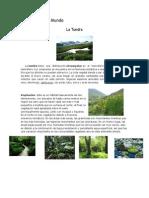 Los Biomas del Mundo.docx