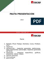 PAUTA PRESENTACIÓN-2014