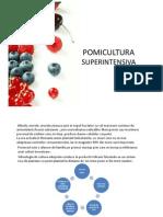 Z1. Studiu de Caz Mihai Z1. studiu de caz Mihai Ungurenus_935.pdfUngurenus_935