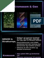 09-DNA dan Gen