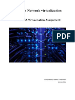 Issues in Network Virtualization