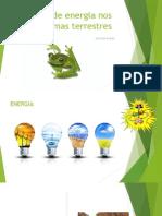 Fluxo Energia