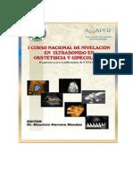 Curso Nivelacion Ultrasonido Obstetricia Ginecologia