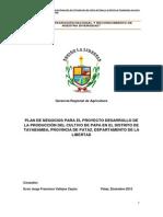 Plan de Negocios de Papa-tayabamba - PERU