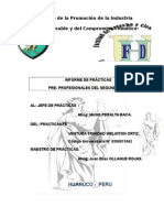 MODELO DE INFORME DE PRACTICAS PRE PROFESIONALES.docx
