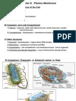PlasmaMembrane 01preLecture-2