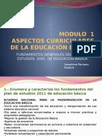 Modulo 1 Aspectos Curriculares de La Educación Básica