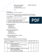 Proiect Didactic - Agregate