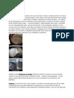Contaminaciones en Cultivo de Hongos Psilocybe