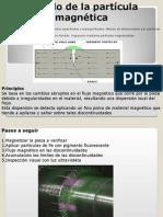 Particulas MAgneticas (PM)