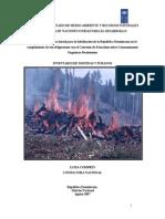 Inventario Dioxinas y Furanos