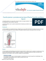 Fascitis Plantar y Protuberancias Óseas (Plantar Fasciitis and Bone Spurs)-OrthoInfo - AAOS