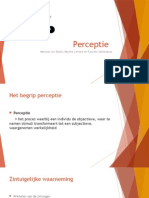 perceptie presentatie