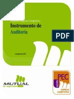 PEC Competitiva-Instrumento de Auditoria-2010