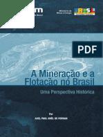 A Mineração e a Flotação No Brasil