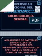 Aislamiento de Bacterias Biofertilizantes Mg